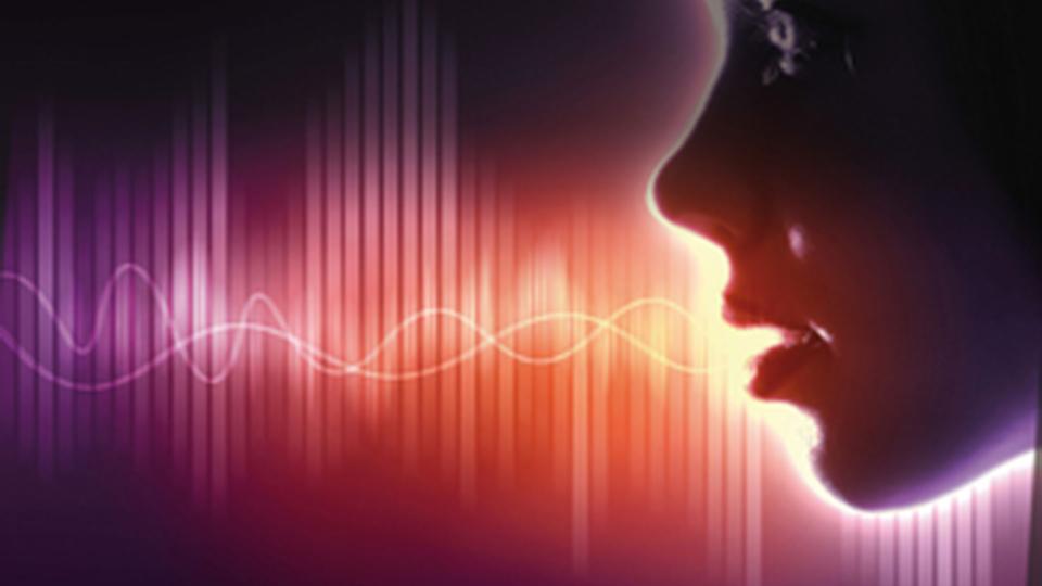 ¿Qué es la voz?